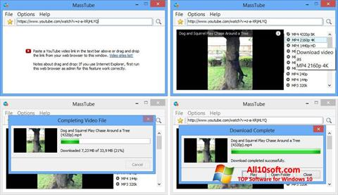 Screenshot MassTube Windows 10