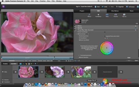 Screenshot Adobe Premiere Elements Windows 10