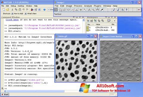 Screenshot ImageJ Windows 10