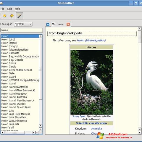 Screenshot GoldenDict Windows 10